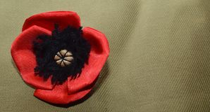 Dekorative rote liegende Mohnblume - auf dem rauen Gewebe vom kakifarbigen Stockbild