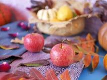 Dekorative Saisonzusammensetzung des hellen Herbstlaubs, der Kürbise, der Äpfel und der rosafarbenen Blumenblätter auf einem Holz lizenzfreies stockfoto