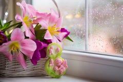 Dekorative Tabelle acht und zarter Blumenstrauß von schönen rosa Tulpen im weißen Korb nahe Fenster mit Regentropfen im Tageslich Lizenzfreie Stockbilder