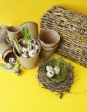 Dekorative Zusammensetzung Ostern auf einem gelben Hintergrund Nest mit Wachteleiern Stockfotos