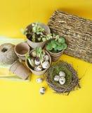 Dekorative Zusammensetzung Ostern auf einem gelben Hintergrund Nest mit Wachteleiern Lizenzfreies Stockfoto