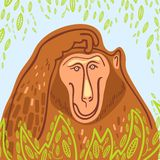 Dekorativer Affe in den grünen Blättern Stockbild