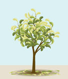 Dekorativer Baum Stockbild