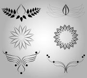 Dekorativer Blumen-Satz Lizenzfreie Stockfotos