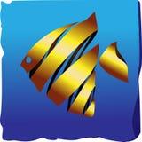 Dekorativer Goldfish Lizenzfreie Stockfotos