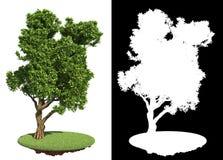 Dekorativer grüner Baum mit Detail-Raster-Maske Lizenzfreies Stockfoto