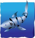 Dekorativer Haifisch Stockfoto