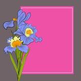 Dekorativer Hintergrund mit Blende Lizenzfreies Stockbild
