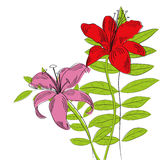 Dekorativer Hintergrund mit Lilienblumen und -anlagen Stockfoto