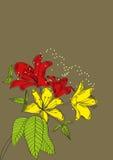 Dekorativer Hintergrund mit Lilienblumen und -anlagen Stockbilder