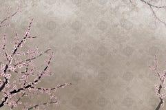 Dekorativer Kirschbaum und chinesisches Muster filigre Stockfoto