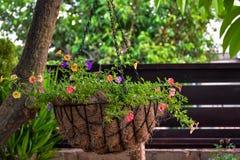 Dekorativer Korb mit Blumen Stockfoto