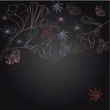 Dekorativer mit Blumenhintergrund mit fresia Lizenzfreies Stockfoto