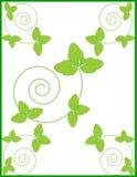 Dekorativer natürlicher Blumenrahmen, Hintergrund Lizenzfreies Stockfoto