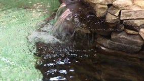 Dekorativer Poolwasserfall stock footage