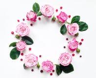 Dekorativer Rahmen mit Rosen und Beeren auf weißem Hintergrund Flache Lage Stockbild