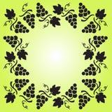 Dekorativer Rahmen mit Weinstock, Trauben und Bl?ttern Auch im corel abgehobenen Betrag stock abbildung