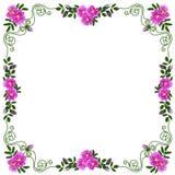 Dekorativer Rahmen, Rahmen für den Text im Farbvektorbild Lizenzfreie Stockbilder