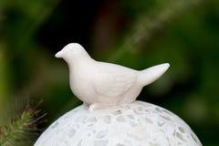 Dekorativer Vogel, ein Abschluss herauf Schuß Lizenzfreies Stockbild