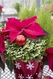 Dekorativer Weihnachtsbehälter Stockfotografie