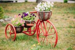 Dekorativer Weinlese-Modell-Old Bicycle In-Blumen-Garten stockfotos