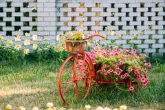 Dekorativer Weinlese-Modell-Old Bicycle Equipped-Korb-Blumen-Garten Stockbilder