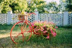 Dekorativer Weinlese-Modell-Old Bicycle Equipped-Korb-Blumen-Garten Stockfoto