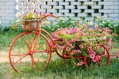 Dekorativer Weinlese-Modell-Old Bicycle Equipped-Korb-Blumen-Garten foto Lizenzfreie Stockfotografie