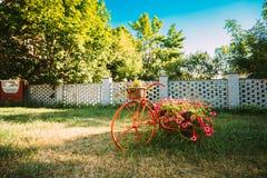 Dekorativer Weinlese-Modell-Old Bicycle Equipped-Korb-Blumen-Garten Getontes Foto Lizenzfreie Stockbilder