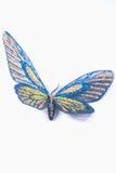 Dekoratives Blaues und Gelbes des Schmetterlinges lokalisiert auf einem weißen backgro stockbild