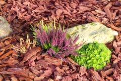 Dekoratives Blumenbeet mit Laub bedeckt mit Lärchenbaumrinde Lizenzfreie Stockfotos