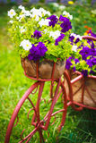 Dekoratives Fahrrad im Garten Stockfotos