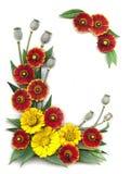 Dekoratives Feld der hellen roten und gelben Blumen Stockfotografie