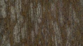 Dekoratives hölzernes Panel Stockfoto