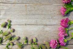 Dekoratives ikebana mit Blumen des Klees auf dem hölzernen Stockfoto