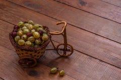 Dekoratives Korbfahrrad mit den grünen und roten Stachelbeeren auf einem braunen Holztisch Stockfotos
