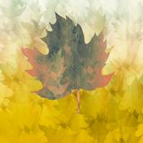 Dekoratives Papier der Weinlese Strukturiertes Papier des abstrakten Herbstes Weinlesefarbe beschmutzt auf Hintergrund Handgezoge stock abbildung