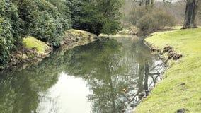 Dekorativt damm för slott Trädgårds- projekt på badningdammet Oasen av stillhet i trädgård parkerar arkivfilmer