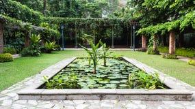 Dekorativt damm i botaniska trädgården Arkivbild