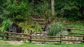 Dekorativt damm med watermill i regn stock video