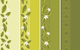 Dekorativt gränsar med vitblommor royaltyfri illustrationer