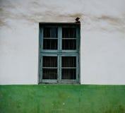 Dekorativt grönt fönster Arkivfoton