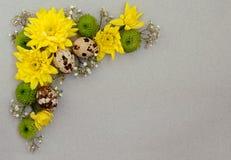 Dekorativt hörn av gula, gröna och vita blommor med vaktelägg på grått papper royaltyfri foto