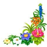 Dekorativt hörn med tropiska blommor Exotiska tropiska växter royaltyfri illustrationer