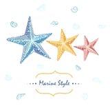 Dekorativt havskort med sjöstjärnor i olika färger Arkivfoto