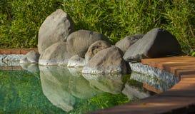 Dekorativt koidamm i en trädgård Arkivfoton