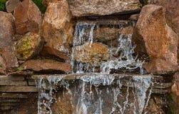 Dekorativt koidamm i en trädgård Royaltyfri Foto
