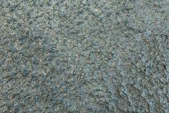 Dekorativt lättnadsljus för abstrakt Grunge - blått Royaltyfria Foton
