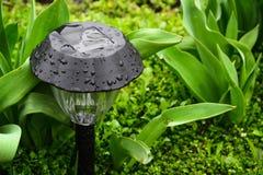Dekorativt litet sol- trädgårds- ljus royaltyfri fotografi