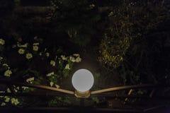Dekorativt litet sol- trädgårds- ljus, lyktor i rabatt i grön lövverk trädgårds- trädgårdar hamilton New Zealand för design Sol-  fotografering för bildbyråer